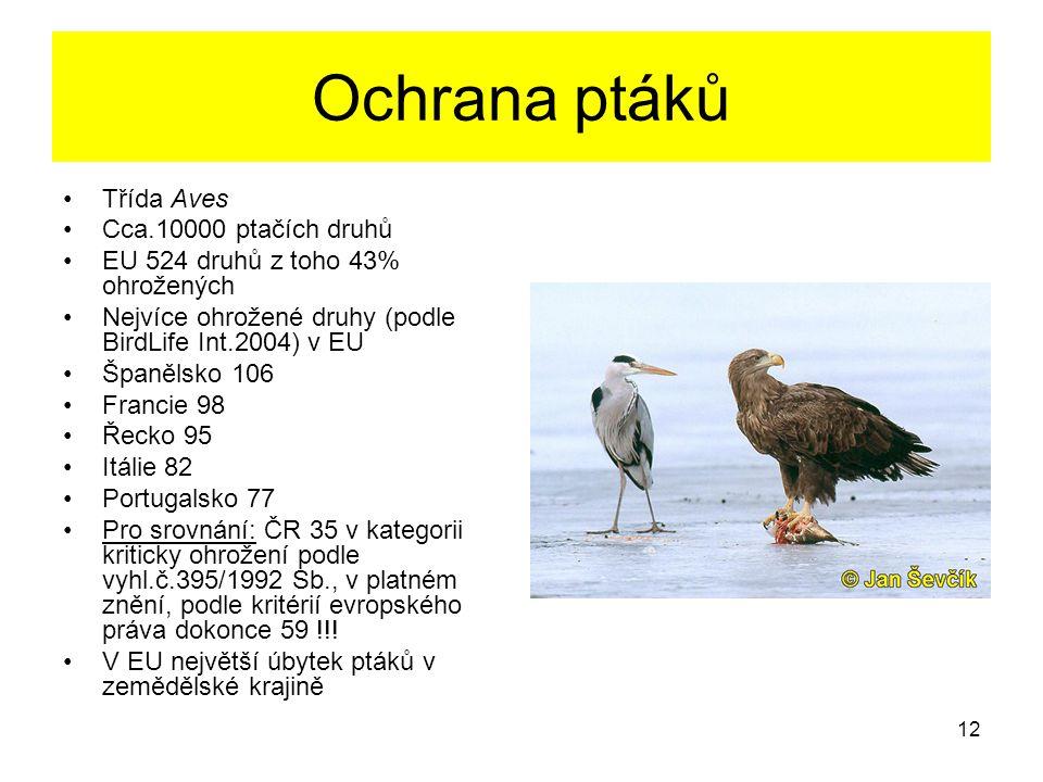 Ochrana ptáků Třída Aves Cca.10000 ptačích druhů