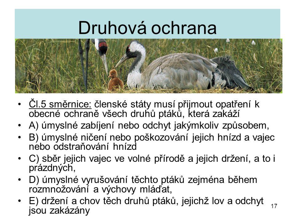 Druhová ochrana Čl.5 směrnice: členské státy musí přijmout opatření k obecné ochraně všech druhů ptáků, která zakáží.