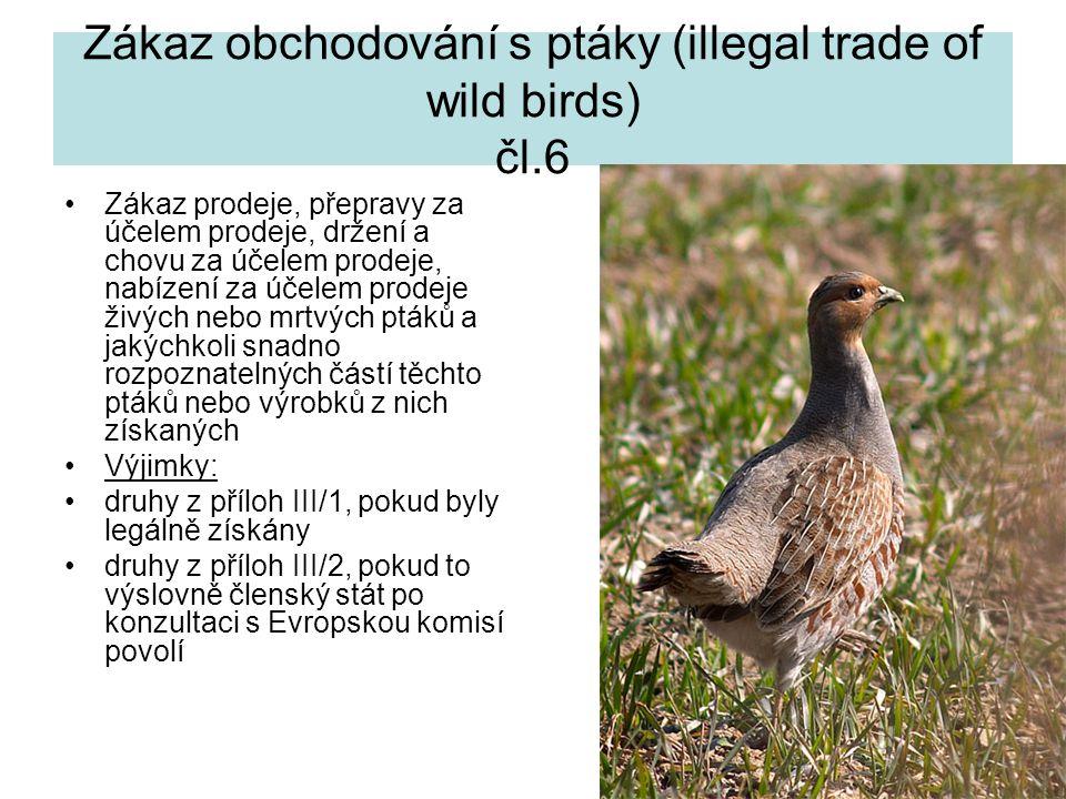 Zákaz obchodování s ptáky (illegal trade of wild birds) čl.6