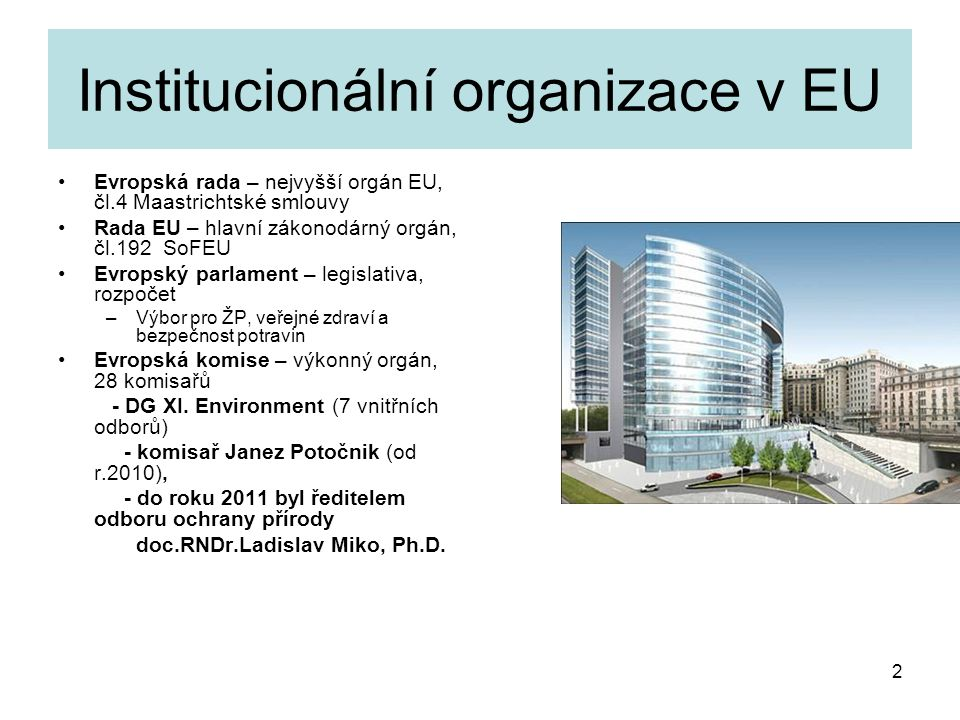 Institucionální organizace v EU