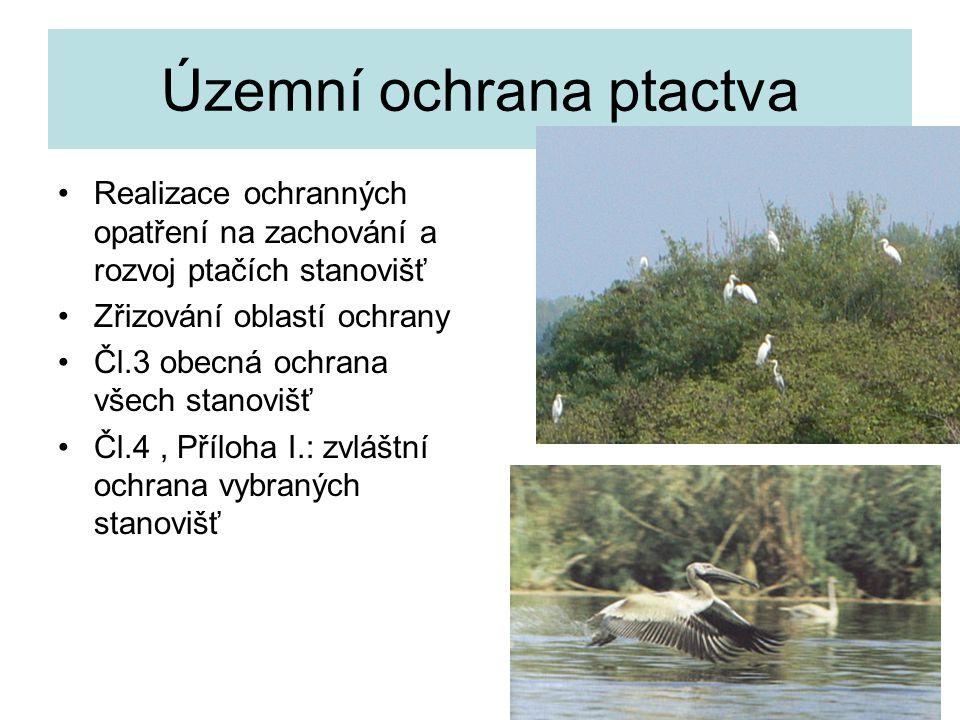 Územní ochrana ptactva