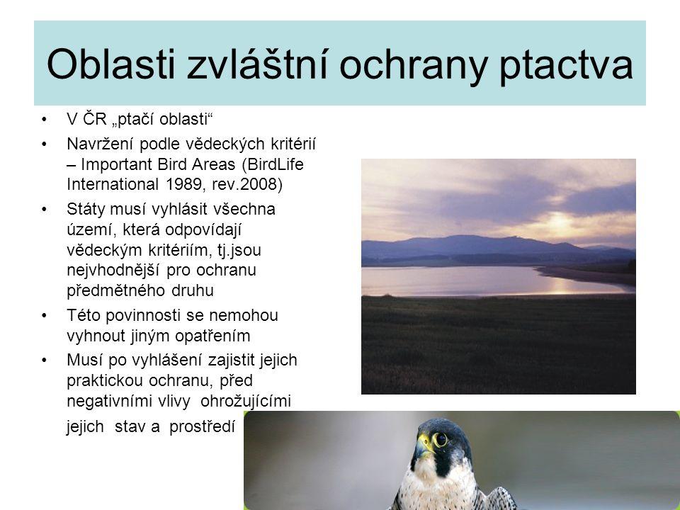 Oblasti zvláštní ochrany ptactva