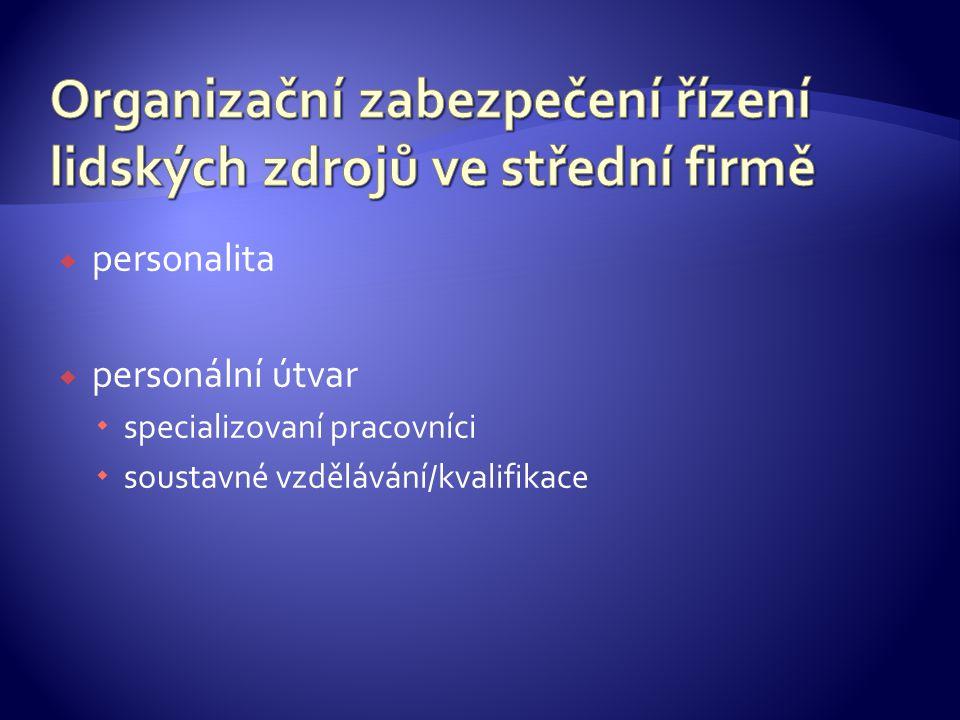 Organizační zabezpečení řízení lidských zdrojů ve střední firmě