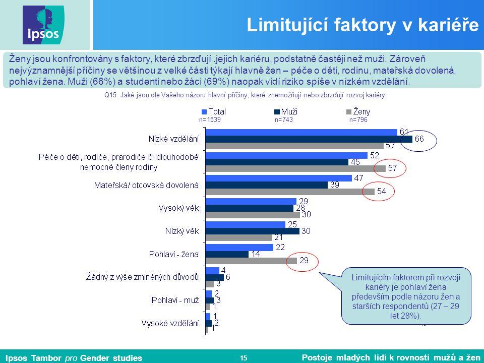 Limitující faktory v kariéře