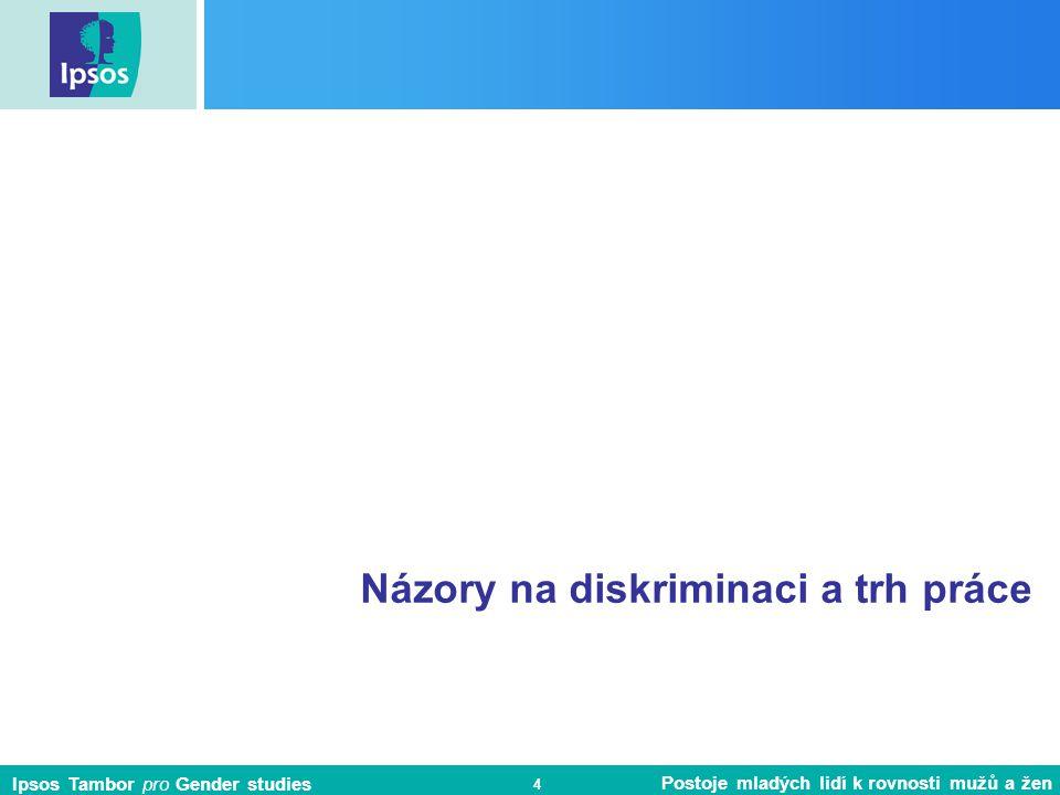 Názory na diskriminaci a trh práce