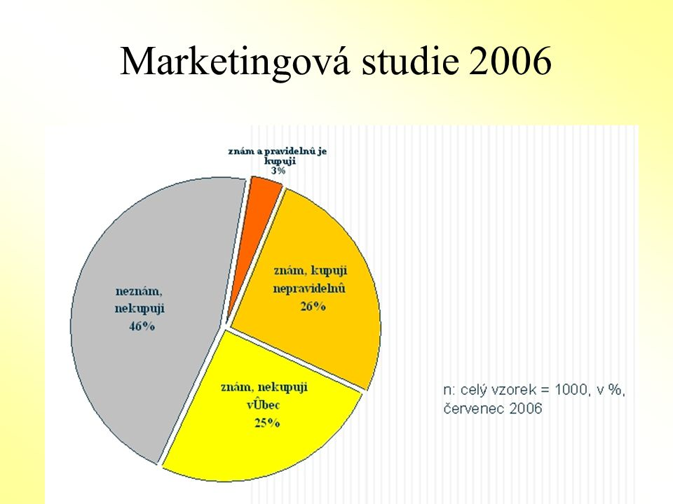 Marketingová studie 2006