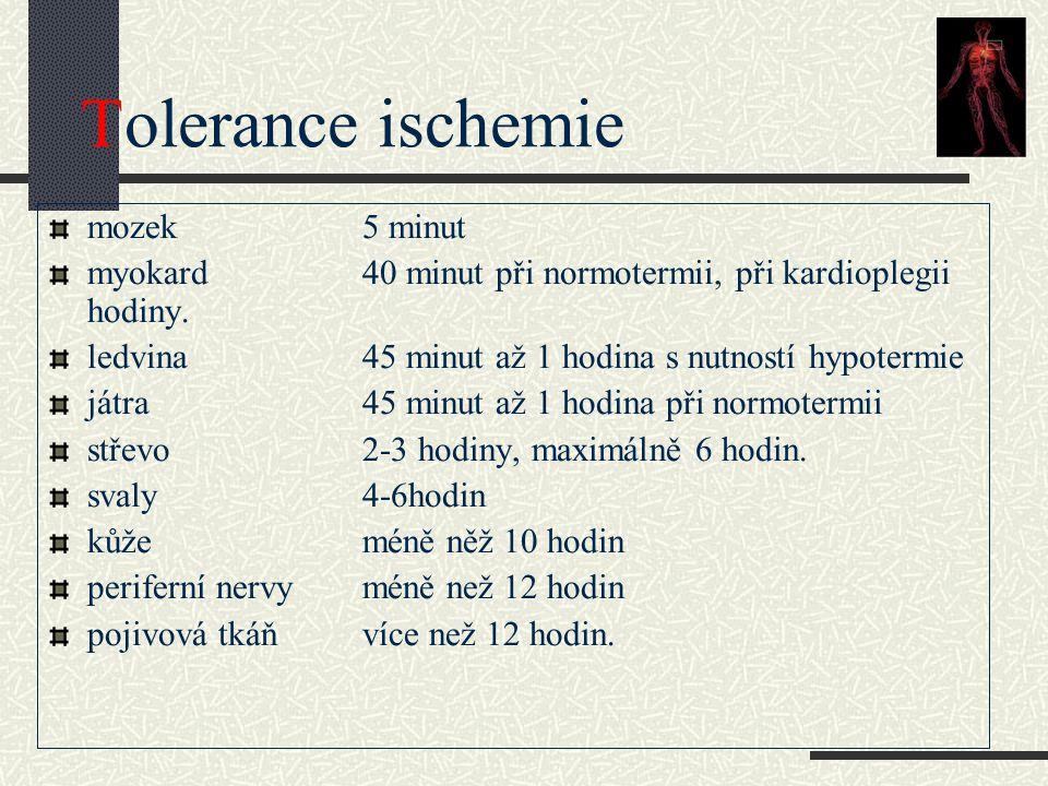 Tolerance ischemie mozek 5 minut