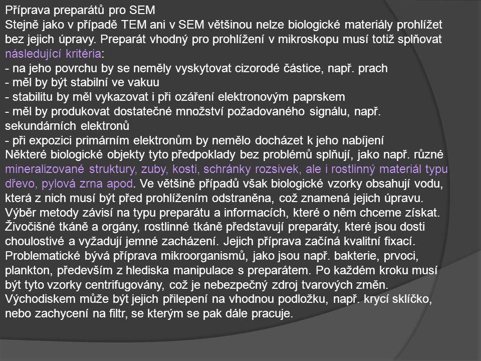 Příprava preparátů pro SEM Stejně jako v případě TEM ani v SEM většinou nelze biologické materiály prohlížet bez jejich úpravy.