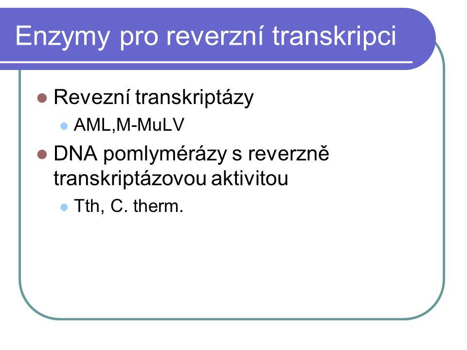 Enzymy pro reverzní transkripci