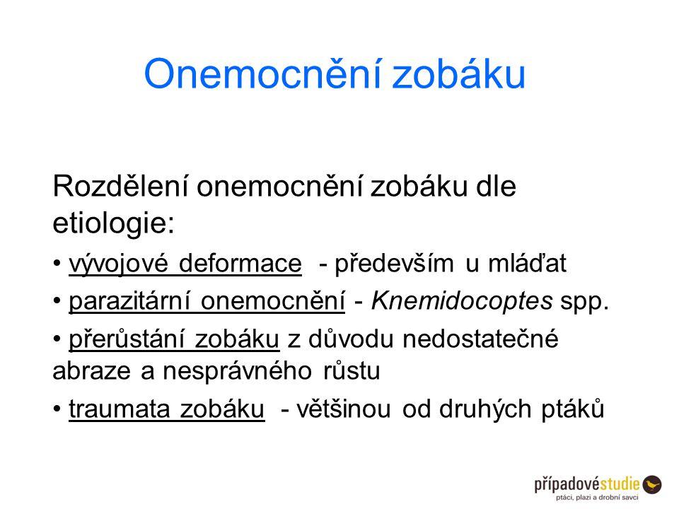 Onemocnění zobáku Rozdělení onemocnění zobáku dle etiologie: