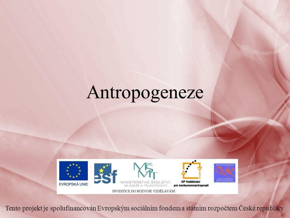Antropogeneze Tento projekt je spolufinancován Evropským sociálním fondem a státním rozpočtem České republiky.