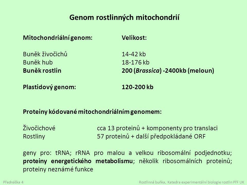 Genom rostlinných mitochondrií