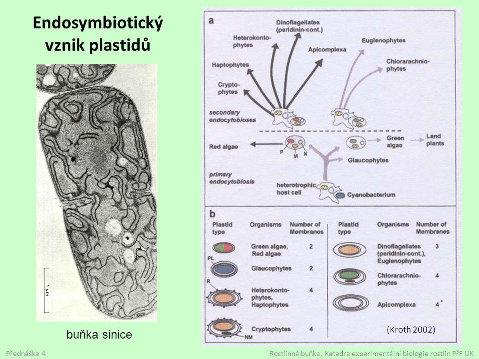 Endosymbiotický vznik plastidů