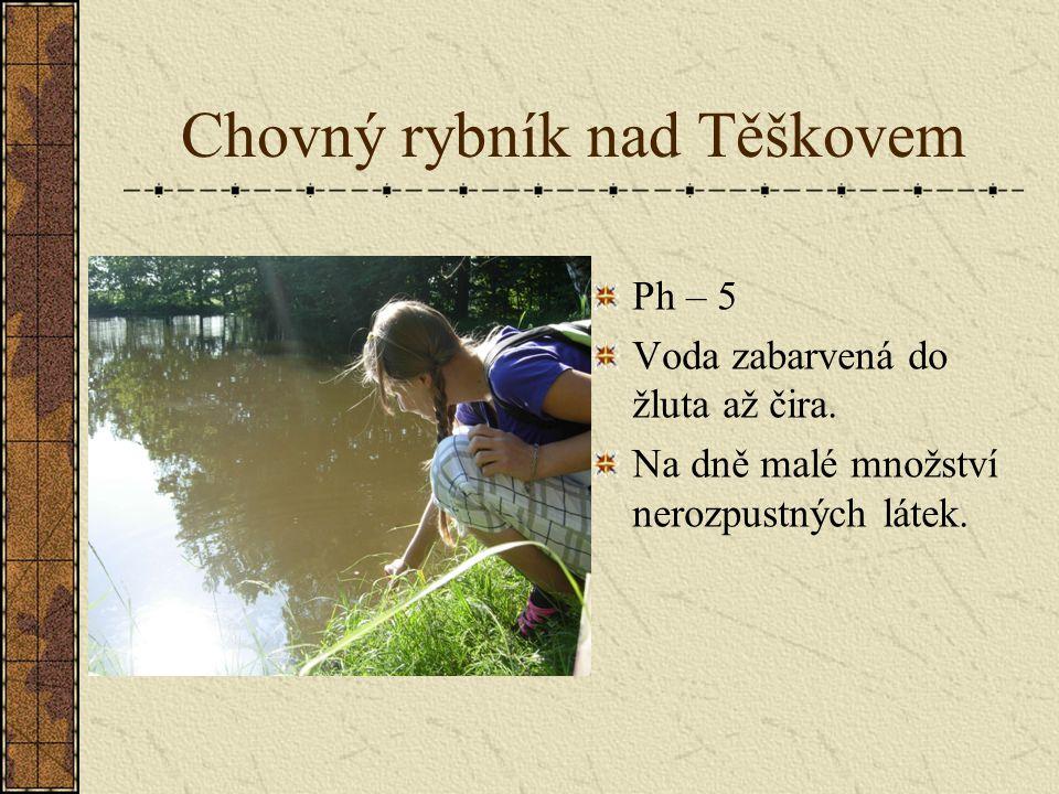 Chovný rybník nad Těškovem
