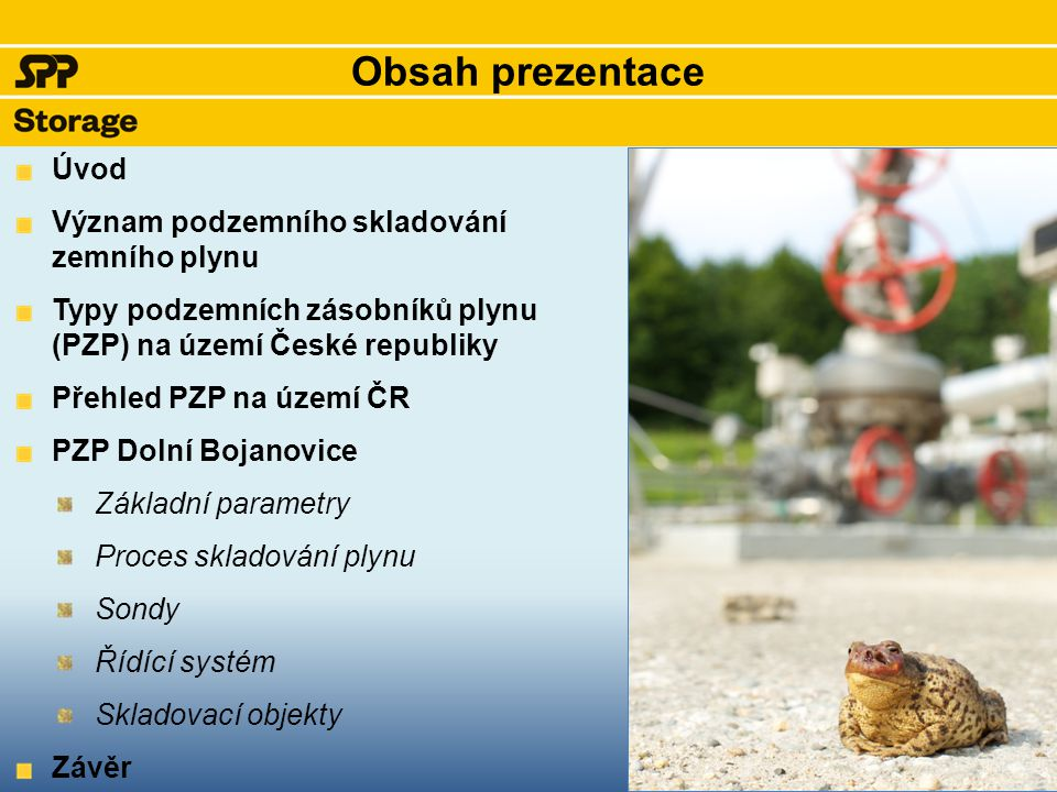 Obsah prezentace Úvod Význam podzemního skladování zemního plynu