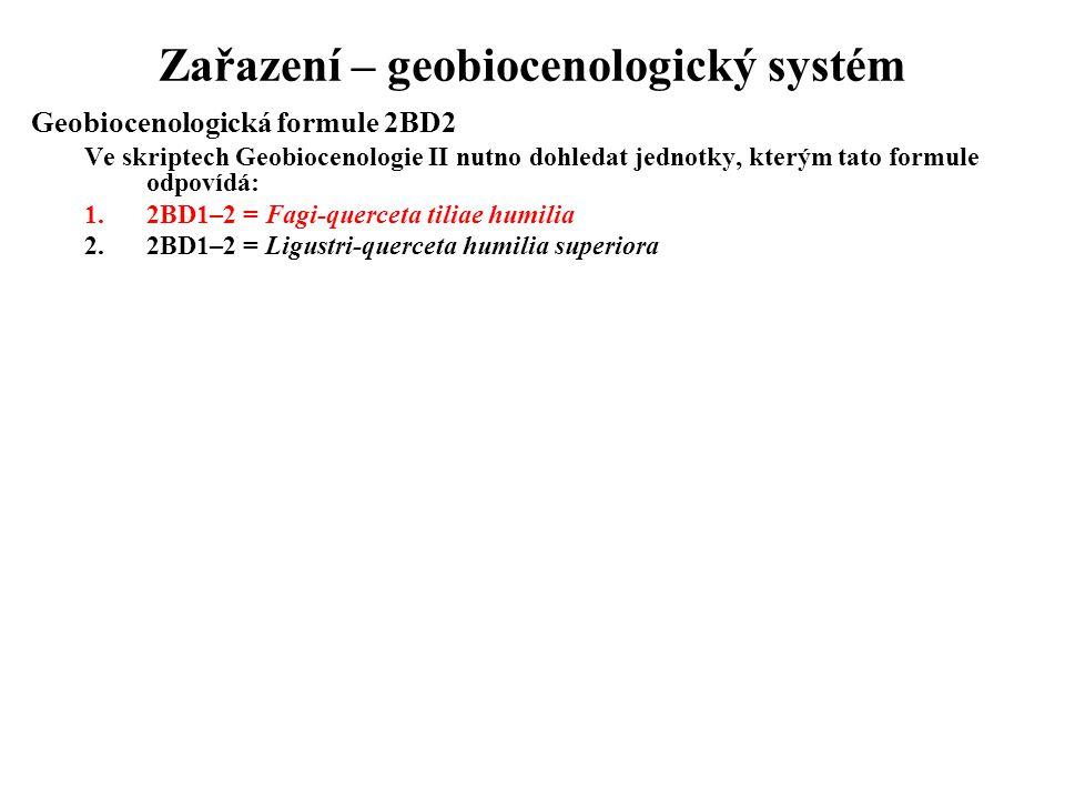 Zařazení – geobiocenologický systém