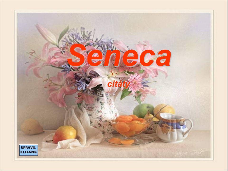 Seneca citáty