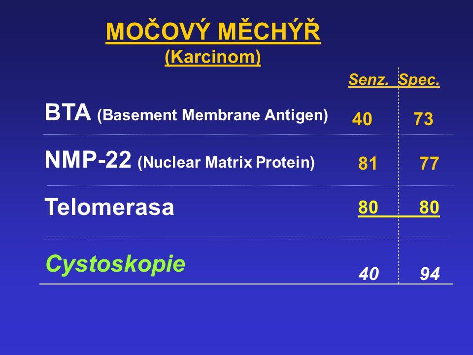 BTA (Basement Membrane Antigen) NMP-22 (Nuclear Matrix Protein)