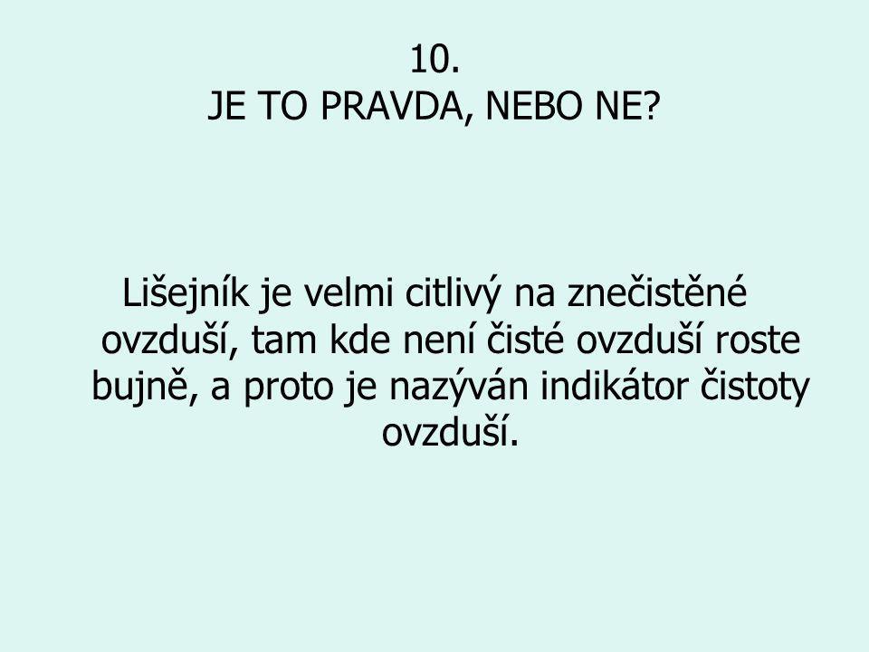 10. JE TO PRAVDA, NEBO NE