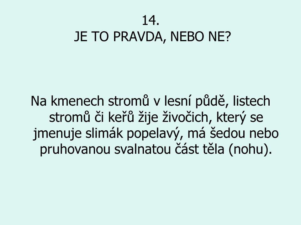 14. JE TO PRAVDA, NEBO NE
