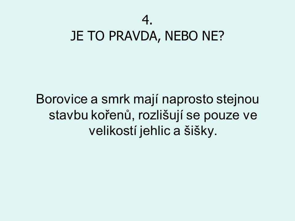 4. JE TO PRAVDA, NEBO NE.