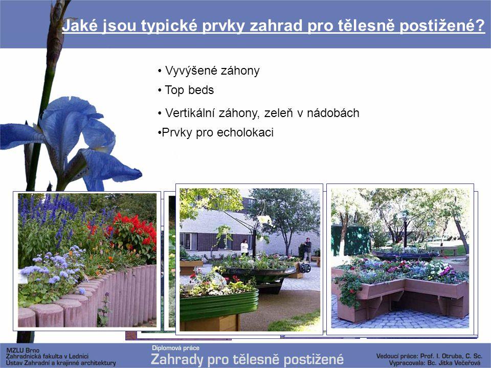 Jaké jsou typické prvky zahrad pro tělesně postižené