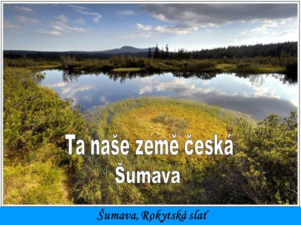Ta naše země česká Šumava Šumava, Rokytská slať