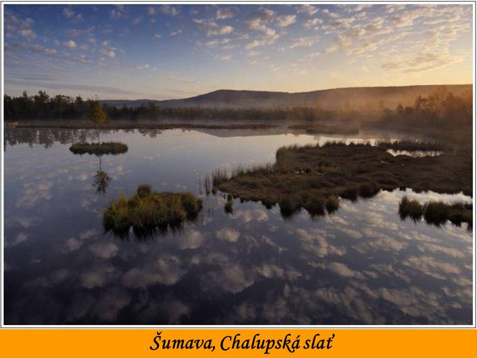 Šumava, Chalupská slať