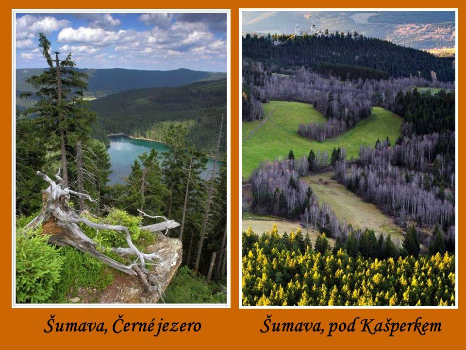 Šumava, Černé jezero Šumava, pod Kašperkem