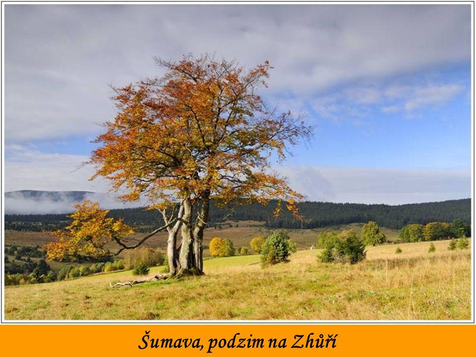 Šumava, podzim na Zhůří