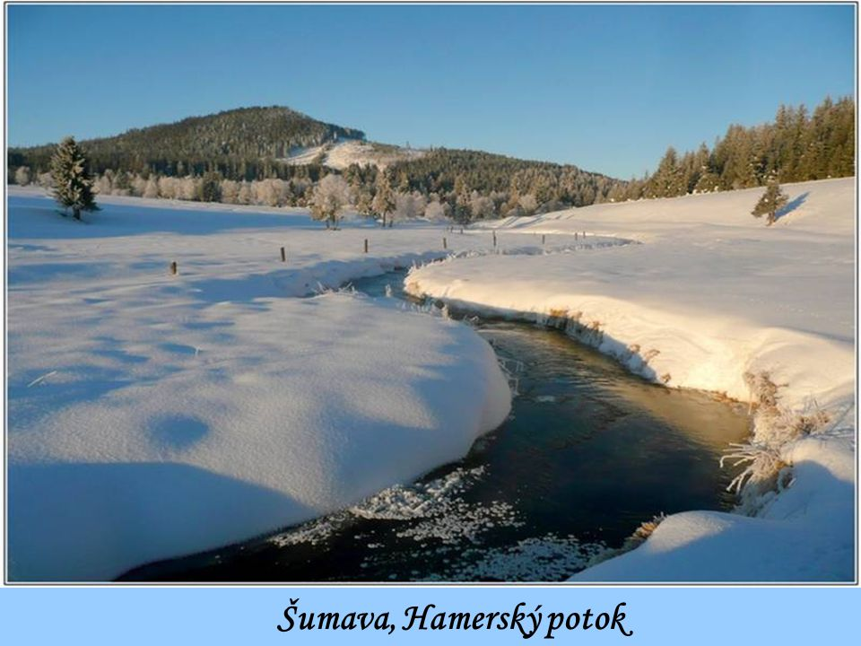 Šumava, Hamerský potok