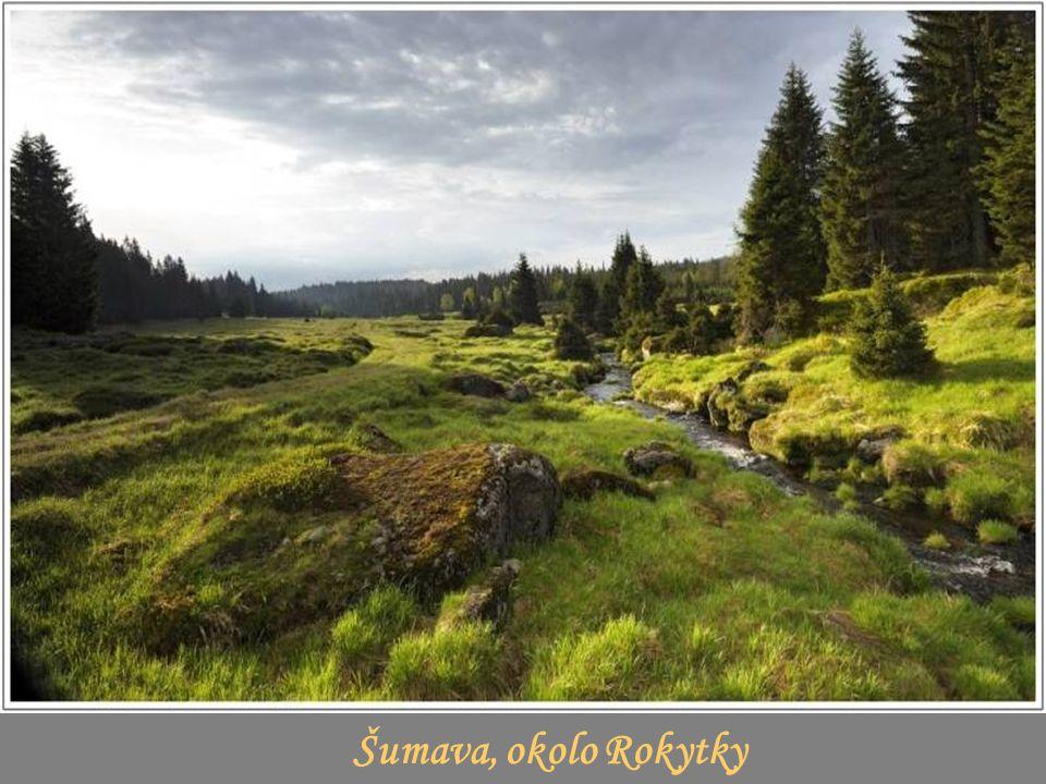 Šumava, okolo Rokytky