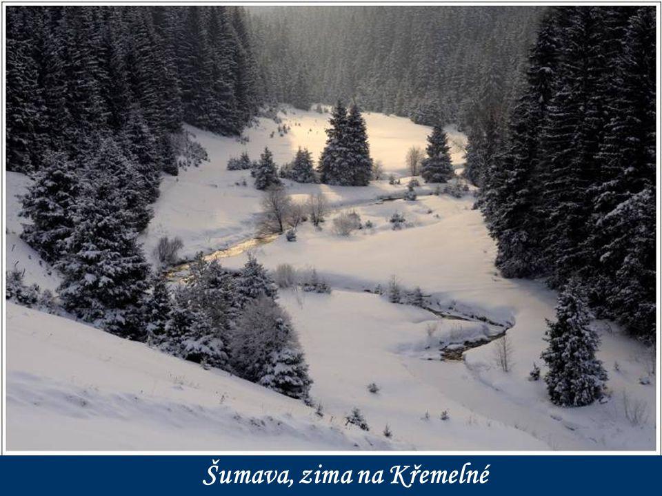 Šumava, zima na Křemelné