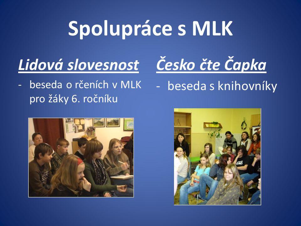 Spolupráce s MLK Lidová slovesnost Česko čte Čapka beseda s knihovníky