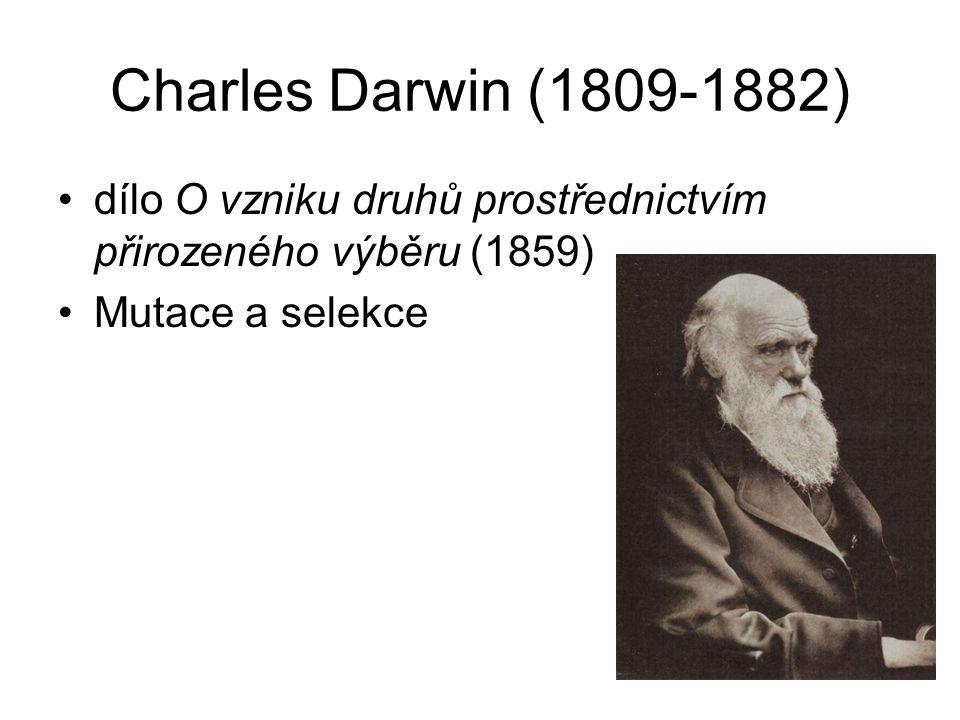 Charles Darwin (1809-1882) dílo O vzniku druhů prostřednictvím přirozeného výběru (1859) Mutace a selekce.