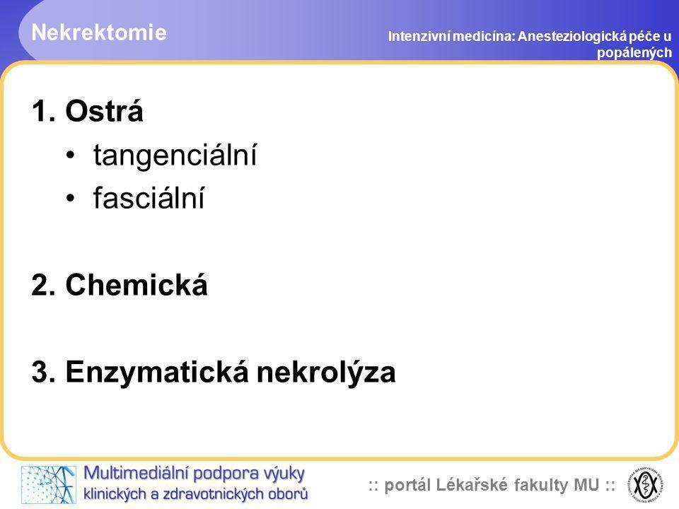 Enzymatická nekrolýza