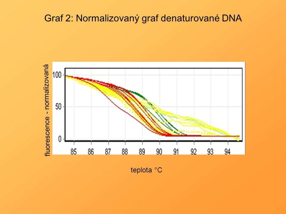 Graf 2: Normalizovaný graf denaturované DNA