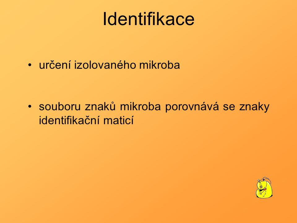 Identifikace určení izolovaného mikroba