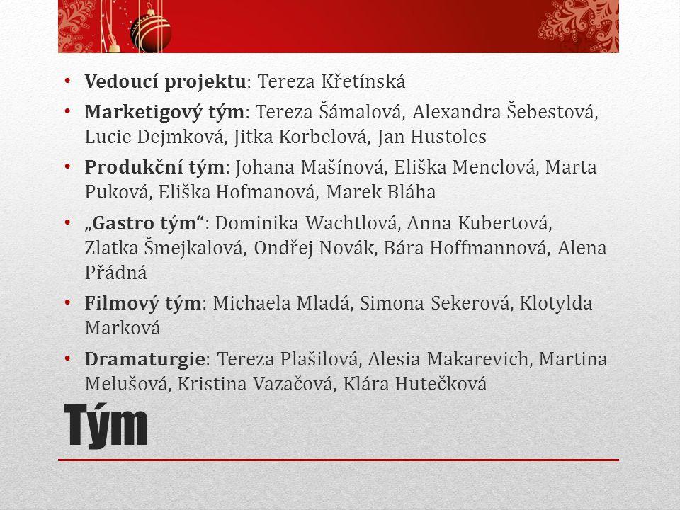 Tým Vedoucí projektu: Tereza Křetínská