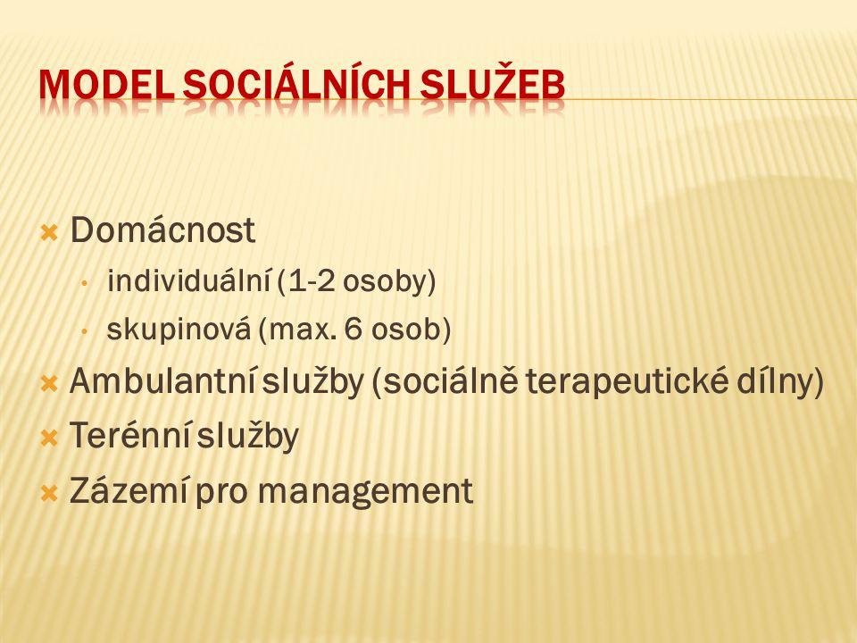Model sociálních služeb
