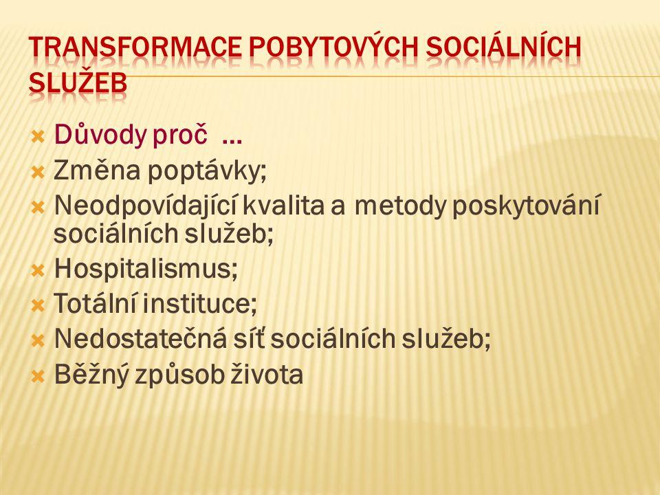 TRANSFORMACE POBYTOVÝCH SOCIÁLNÍCH SLUŽEB