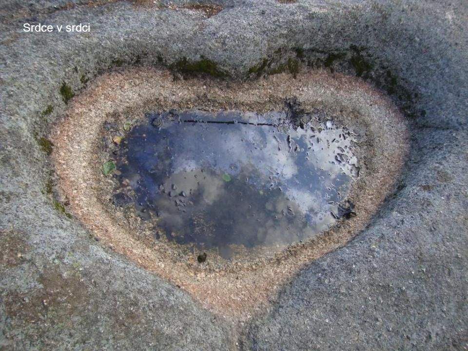 Srdce v srdci