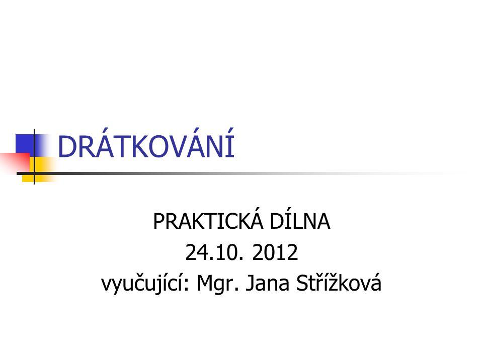 PRAKTICKÁ DÍLNA 24.10. 2012 vyučující: Mgr. Jana Střížková