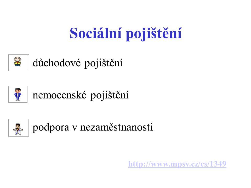 Sociální pojištění důchodové pojištění nemocenské pojištění
