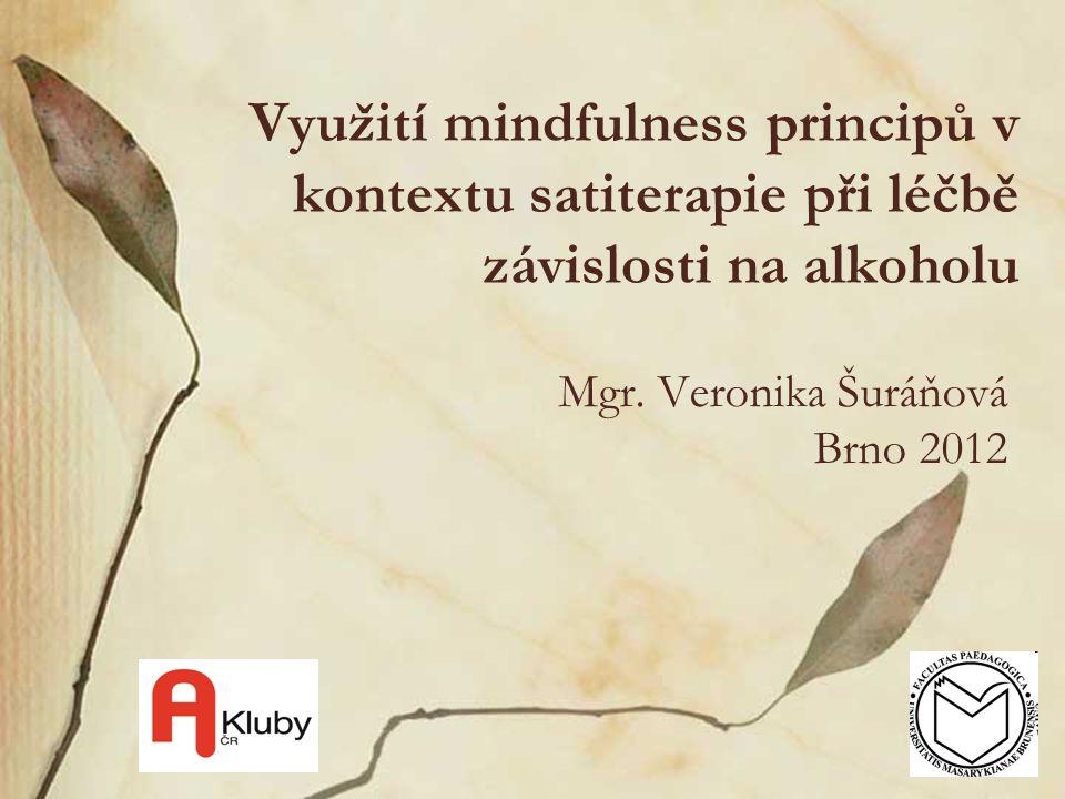 Mgr. Veronika Šuráňová Brno 2012