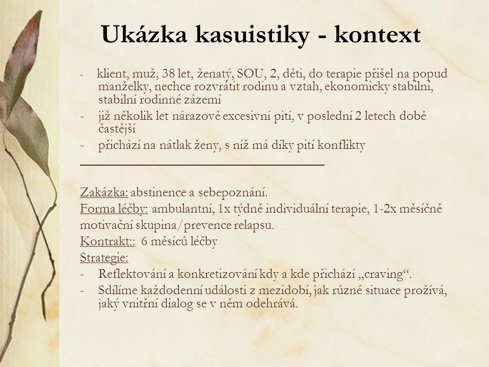 Ukázka kasuistiky - kontext