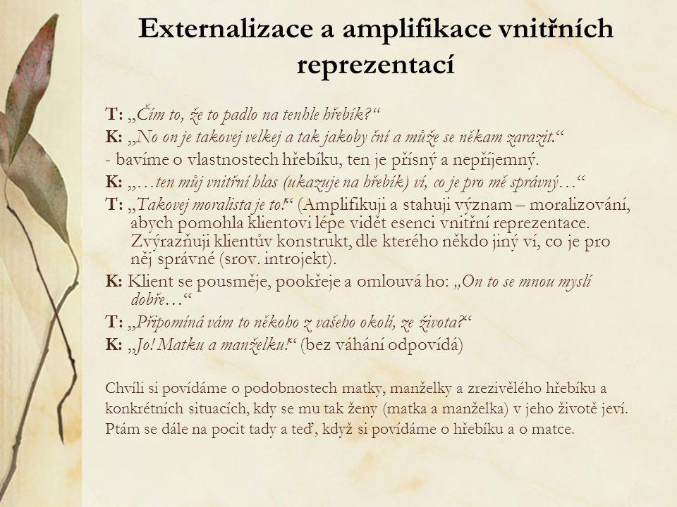 Externalizace a amplifikace vnitřních reprezentací