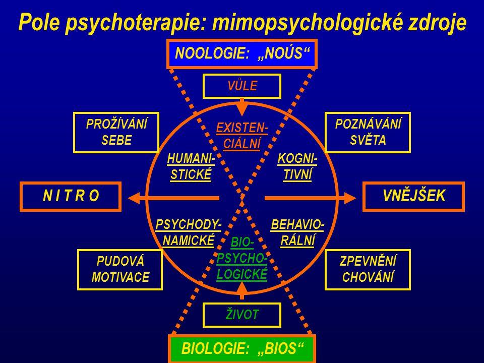 Pole psychoterapie: mimopsychologické zdroje