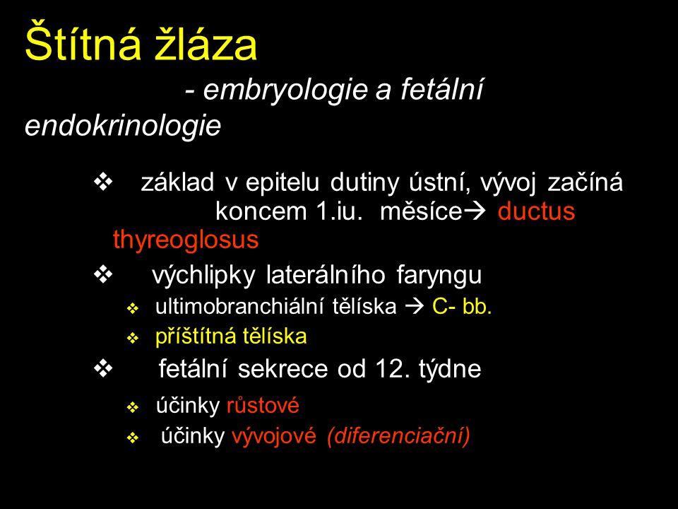 Štítná žláza - embryologie a fetální endokrinologie