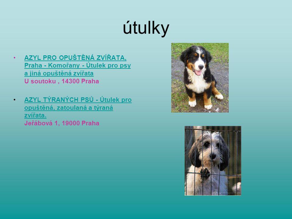 útulky AZYL PRO OPUŠTĚNÁ ZVÍŘATA, Praha - Komořany - Útulek pro psy a jiná opuštěná zvířata U soutoku , 14300 Praha.